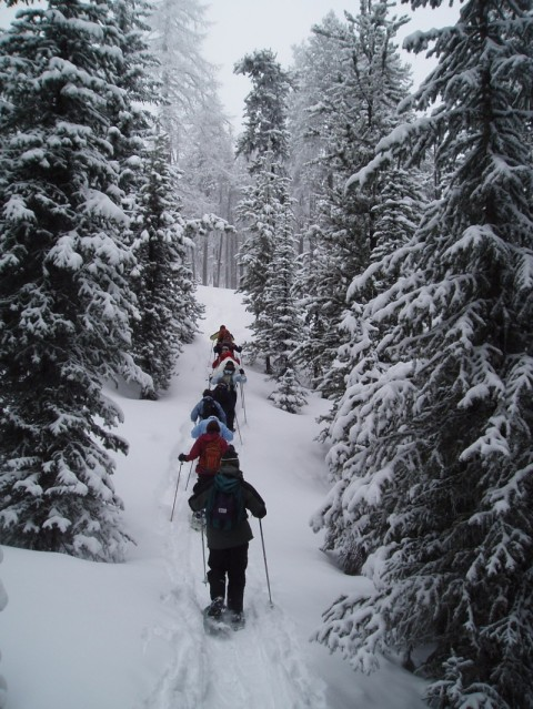 Snowshoeing at Mt. Baldy